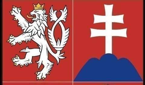 Češi iSlováci narozdíl oddalších evropských občanů vevolbách neprotestovali proti současné EUvolbou Jobbiku či LeFront National. Repro internet