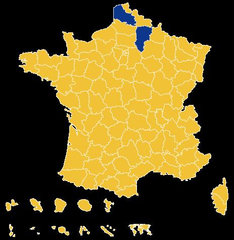 Vzato dle departmentů, podařilo seLe Penové zítězit vAisne aPas-de-Calais (modrá barva). Proporčně senárodovkyni dařilo dobře navýchodofrancouzském venkově, vprůmyslových oblastech a najihu země. Veměstech a nazápadě dominoval zcela Macron. Repro DR/WmC