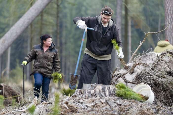 Práce vlese není vyhledávaná, může být pěkná, apřestože nevyžaduje žádnou zvláštní kvalifikaci, některým věcem jenutné rozumět. Foto Česká televize