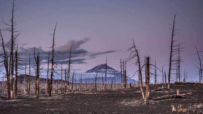 Pojďme být nepříjemní amluvit nejen orozvratu klimatického systému, ale iorůstu akonzumerismu. Foto Kuhnmi, Flickr.com