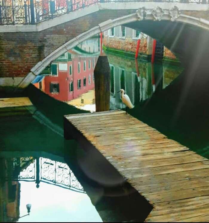 V Benátkách sedějí věci, které nikdo zmístních nepamtuje. Foto Camilla Pellarinová, FBVenezia Pulita