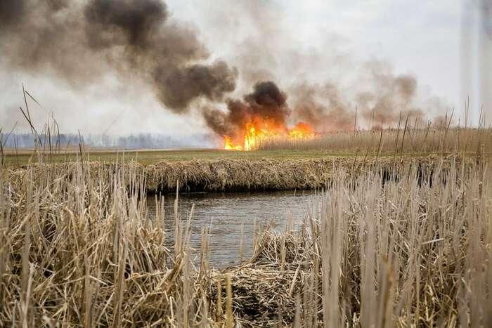 Požáry postihly desetinu Biebrzanského národního parku, který jeparadoxně předmětem ochrany především pro své unikátní mokřady. Foto Marek Maliszewski