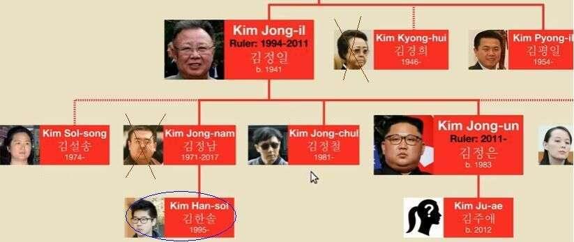 Postavení Kim Han-sola zvýrazněno oválem. Křížkem označené příbuzné nechal Kim Čong-un pouchopení moci zlikvidovat. Repro UsefulCharts, YouTube