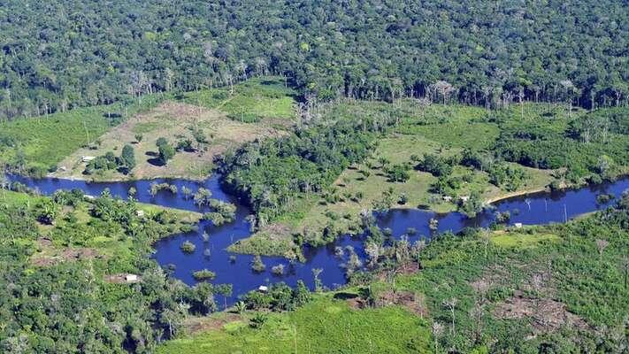 Amazonský prales jepodle vědců jedním zklíčových ekosystémů vboji sklimatickou krizí, jelikož vevelkém zachytává uhlík zatmosféry. Foto CIAT, Flickr