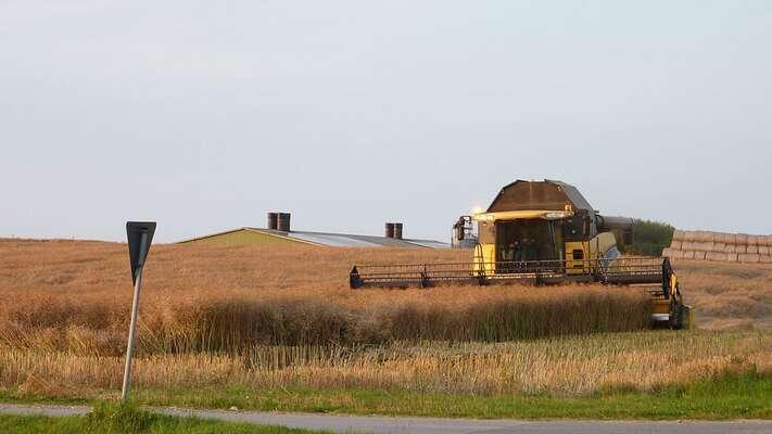 Meliorační soustavy nebezpečně vysoušejí krajinu. Sušší půda ale vyhovuje metodám velkých agrokoncernů, jako jeiAgrofert premiéra Babiše. Foto Smaack, WcM.