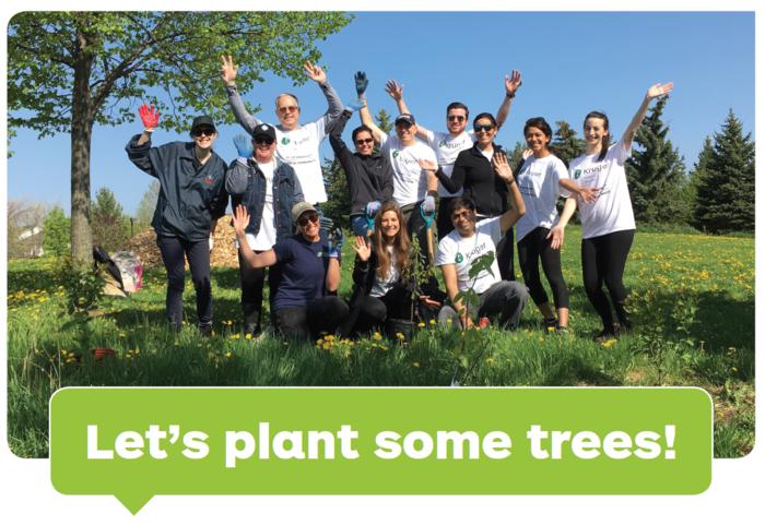 Návrh Evropské komise byvpřípadě schválení umožnil státům vyvázat seze snižování emisí například příslibem výsadby určitého množství stromů. Foto CVC