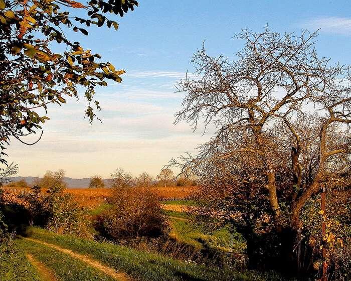 Ohleduplně obhospodařovaná krajina není jen odolnější, ale ipohlednější. Foto Meinolf Wewel, WmC