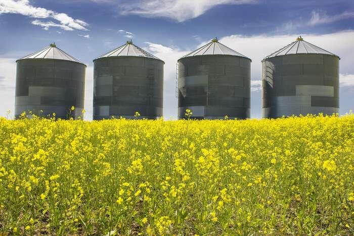 Většina evropských peněz dlouhodobě končí vkapsách velkých firem produkujících potraviny průmyslovými metodami a zamohutného využívání pesticidů aumělých hnojiv. Abude tomu tak inadále. Foto RamonCliff, pixabay.com