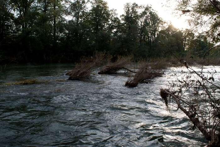 První mrtvé ryby byly pozorovány zde. Odrožnovského kanálu nás oddělují tři kilometry říčního koryta sedvěma mohutnými jezy. Odvýpusti Dezy několik set metrů. Foto Jakub Patočka, DR