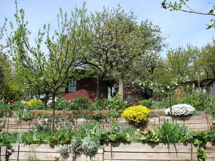 Zahrady plní vměstě řadu nenahraditelných funkcí: umožňují lidem pěstovat sičást potravin bez závislosti natrhu, posilují biodiverzitu, ochlazují své okolí, zadržují vodu. Dobudoucna senám budou ještě hodit. Foto Zahrádkářská kolonie Kraví hora II.
