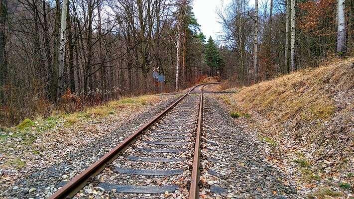 """Zrušená """"Kozí dráha"""", trať mezi spojující Děčín sOldřichovem uDuchcova, jedůkazem toho, že iméně využívané trati či lokálky přivádějí cestující dovlaků vhlavních železničních koridorech ajejich zrušení vede vdůsledku kcelkovému úbytku cestujících. Foto Foto WmC"""