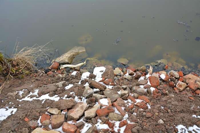 Navézt nahráz rybníka nevytříděný stavební odpad jezhlediska postoje České inspekce životního prostředí zcela vpořádku. Přestože jevrozporu sezákonem. Foto Edvard Sequens